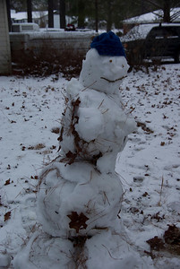 Leafy the Snowman