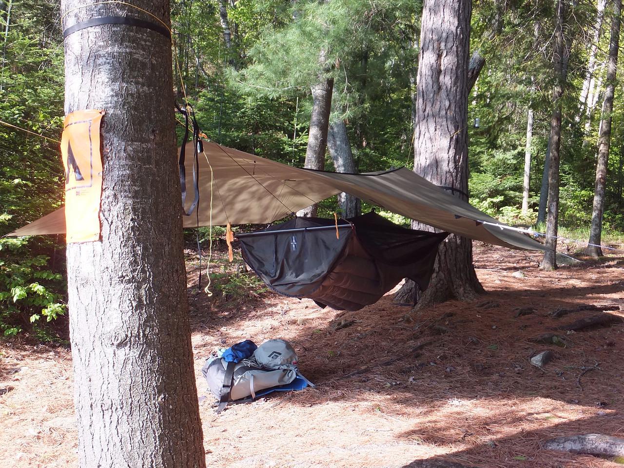 Hammock and tarp