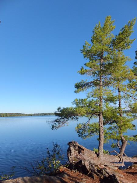 McIntosh Lake