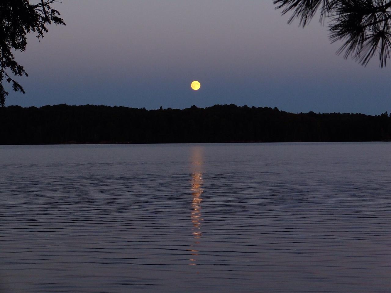 Moonlight on McIntosh