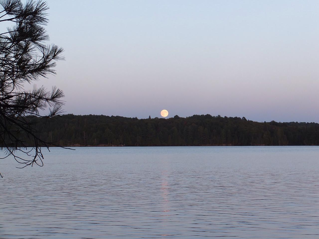 Full moon over McIntosh