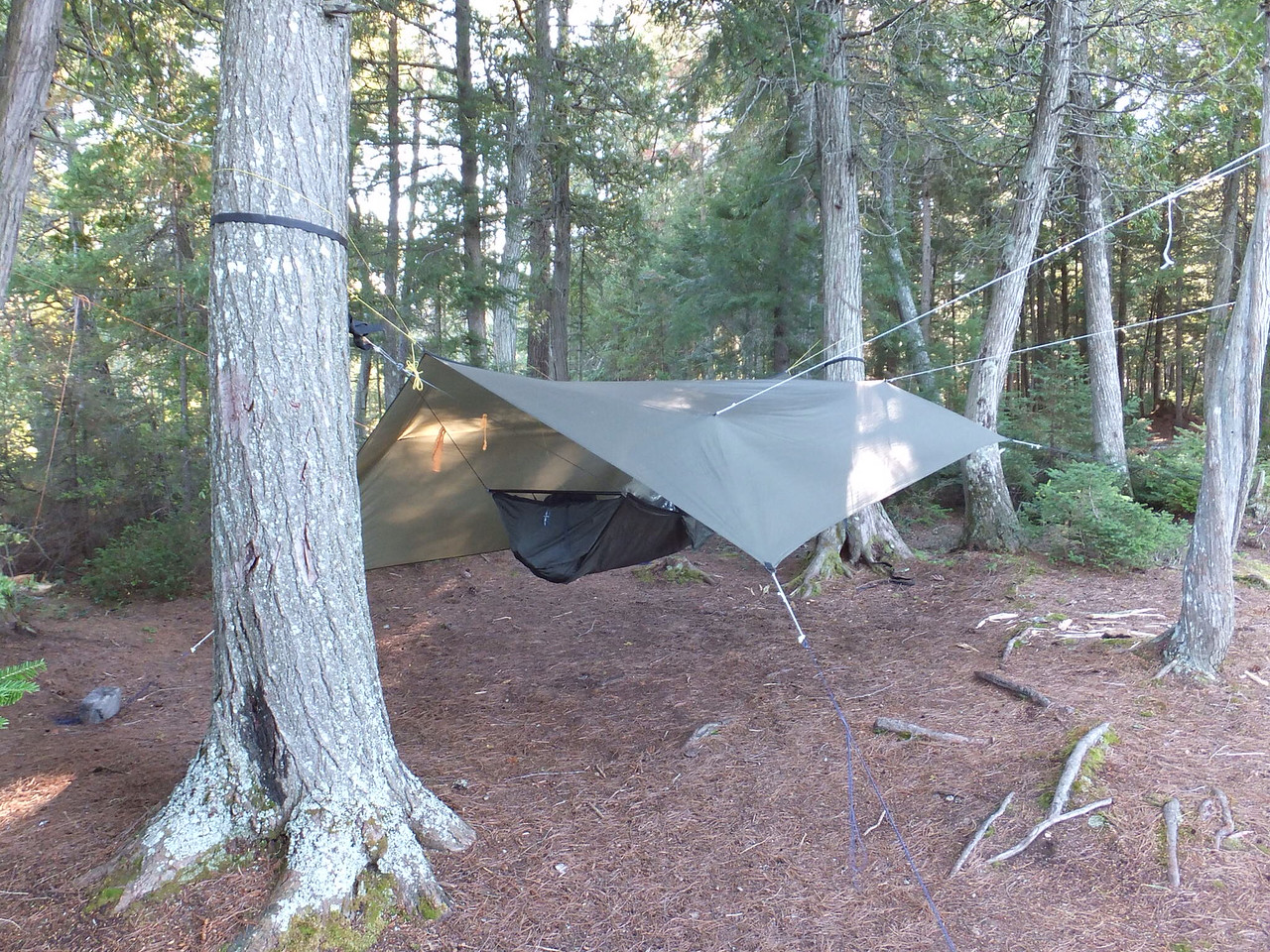 Another tarp and hammock photo