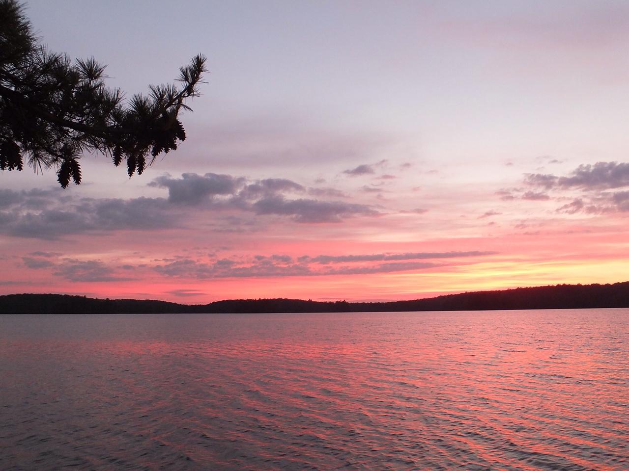 Pink waters, McIntosh Lake