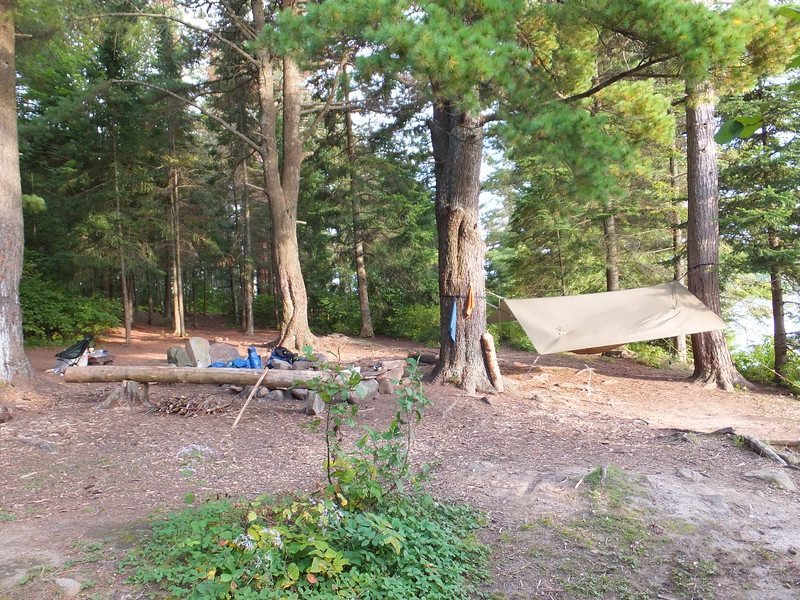 Campsite on Tom Thomson