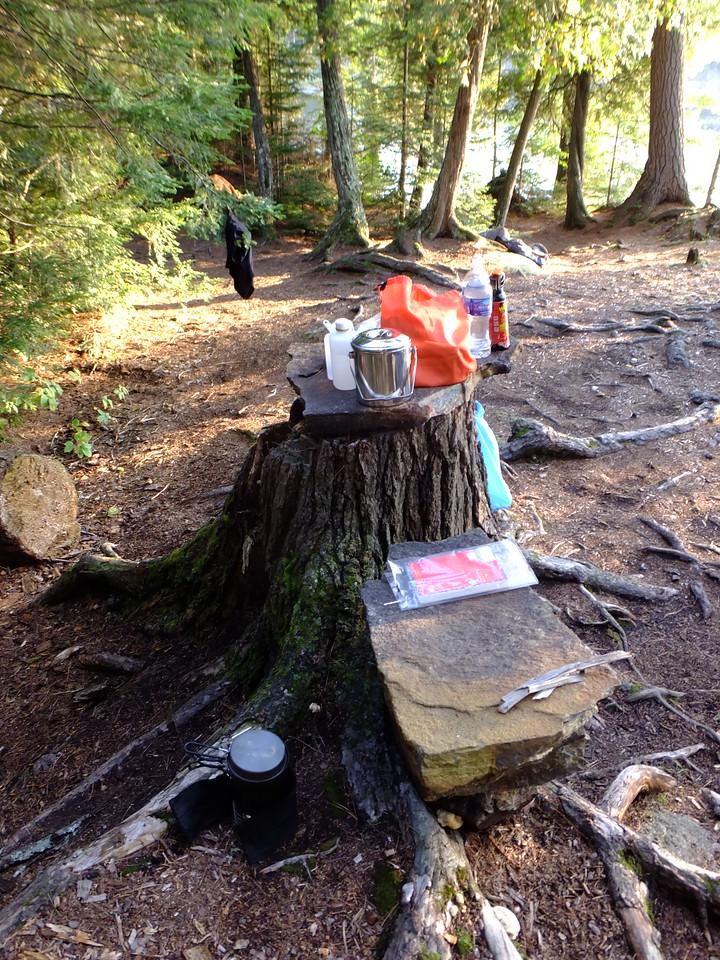 Kitchen stump