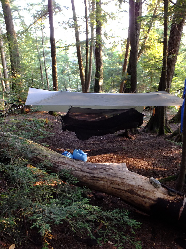 Tarp and hammock.  That's a Warbonnet Ridgerunner bridge-style hammock ...extremely comfy.