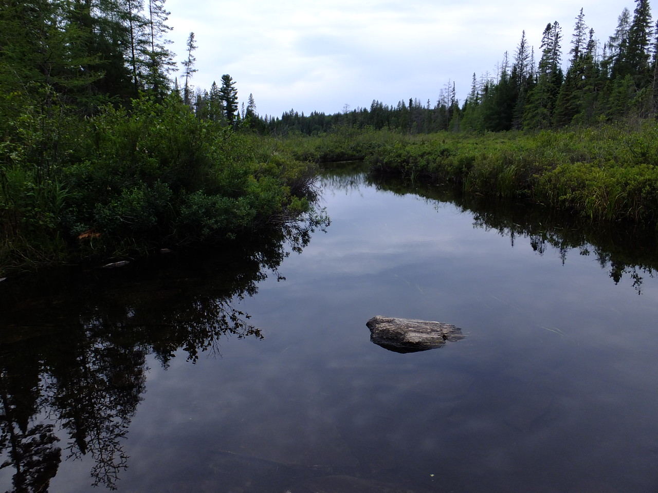This typical northern stream will lead to Big Trout Lake