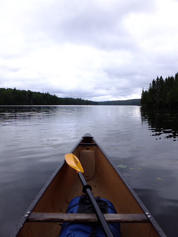 After a steep and crowded portage, arrived onto Lake LaMuir.