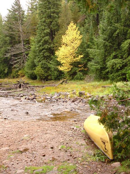 Back for the canoe.