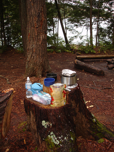 Campsite featured a cooking stump