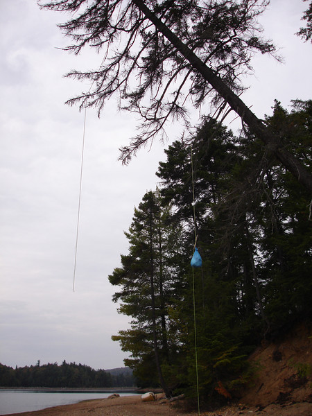 My bear bag and somebody else's rope. Guess they never learned the PCT method of hanging!