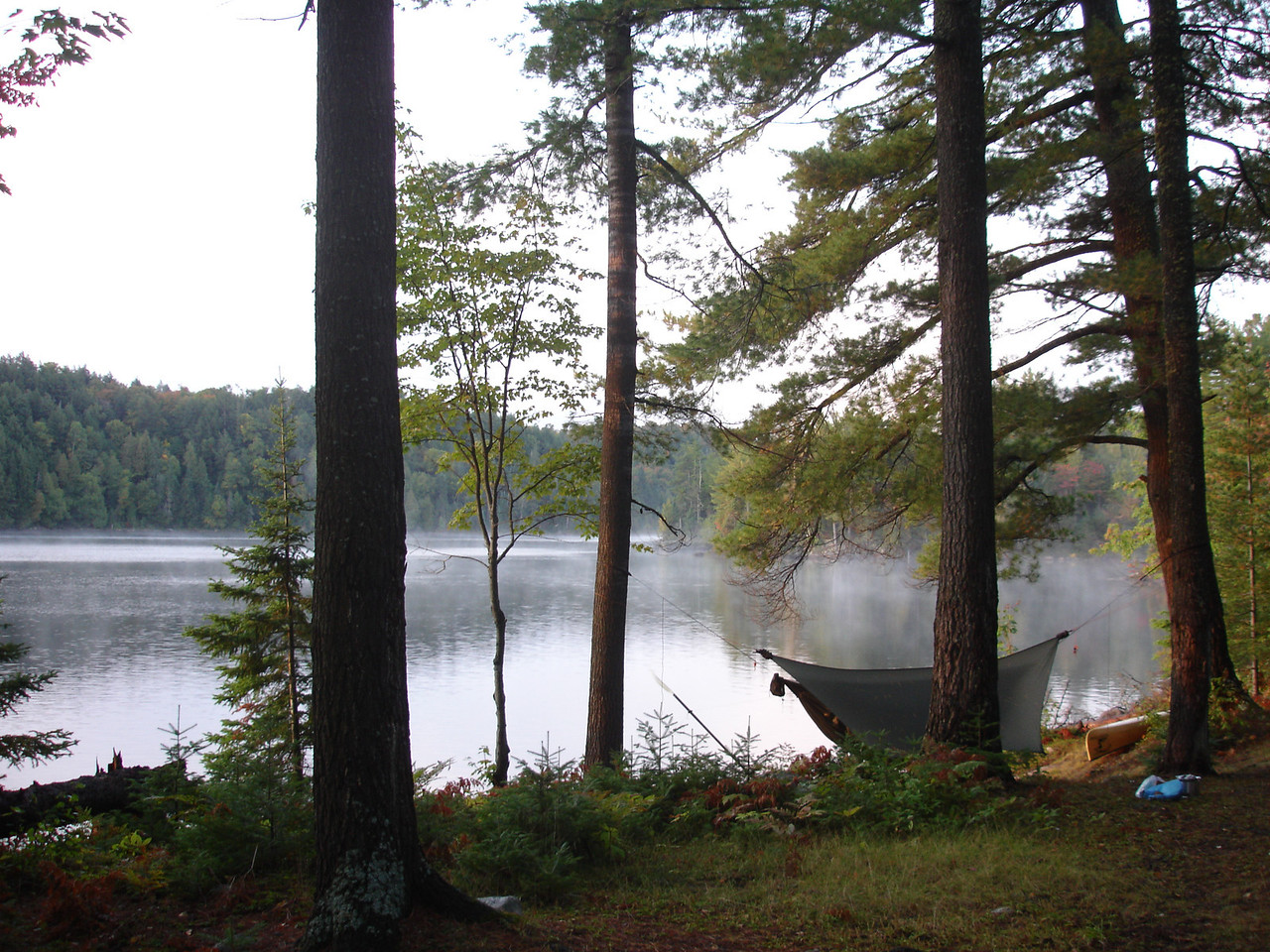 Great campsite with nice white pines and easy water access.