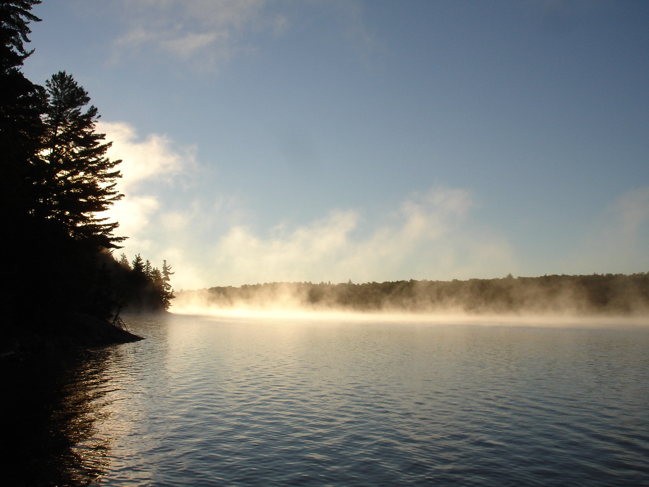 Morning mist on Harry Lake.