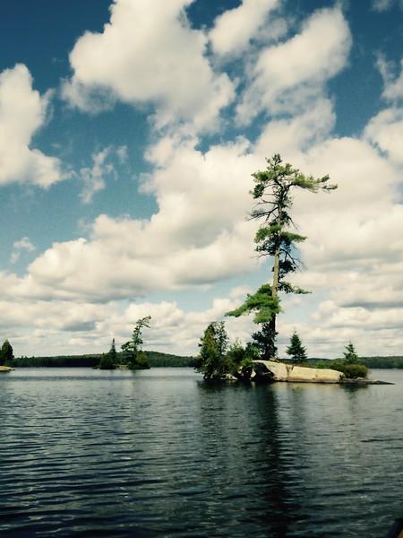 On McIntosh Lake
