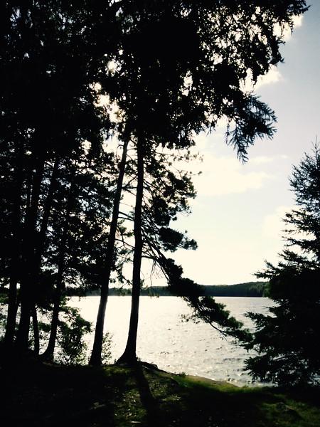 Late afternoon, Timberwolf Lake