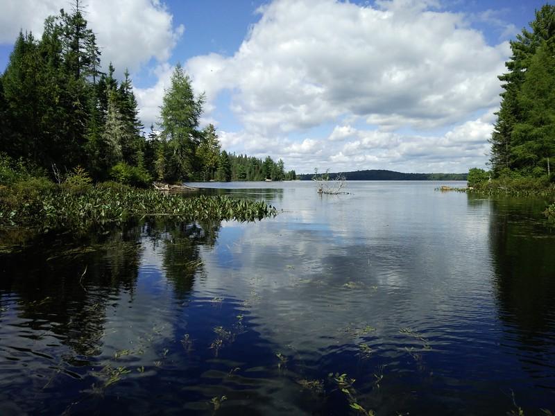 Entrance to McIntosh Lake