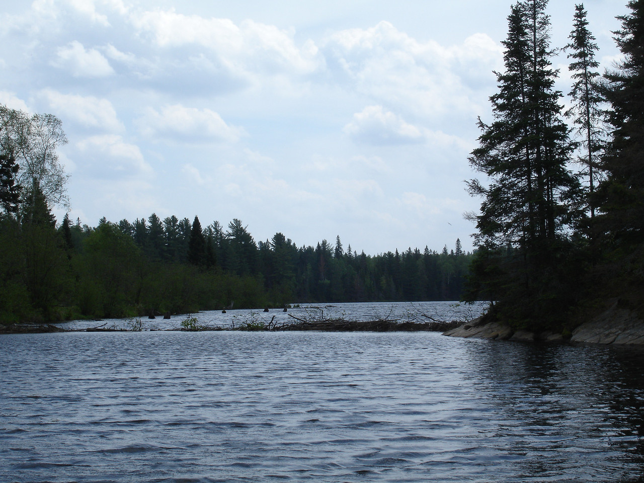 Just crossed this beaver dam lift-over which blocks access to Tom Thomson Lake.