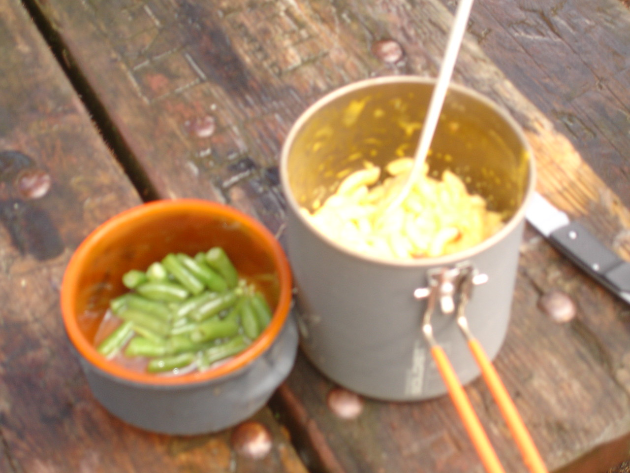 Kraft Dinner and rehydrated green beans!  There was a picnic table at this huge and ugly campsite.