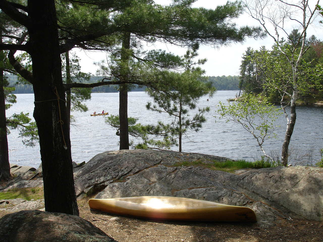 Campsite on Tom Thomson.  A few fishermen took the campsite on the next point.