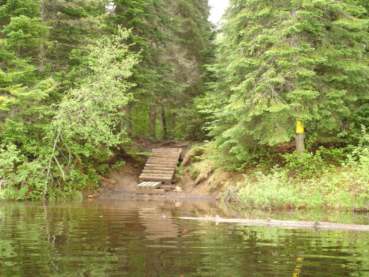 Portage steps, Little-doe Lake to Burnt Island Lake