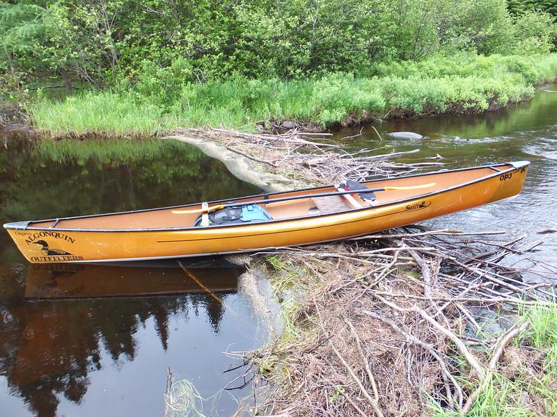 Swift Osprey on Otterslide Creek