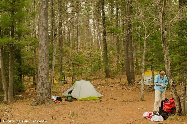 Lone Tree Lake Campsite