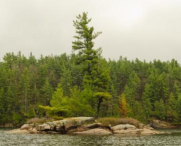 Lone Tree Lake Island