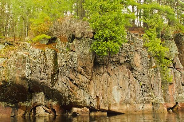 Lone Tree Lake