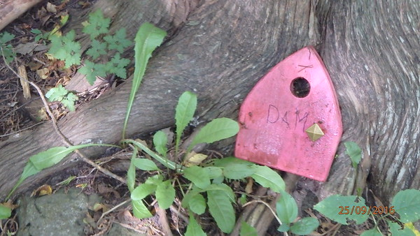 A tiny door found on the river. Now it might allow gnomes or hobbits to enter their world more easily?