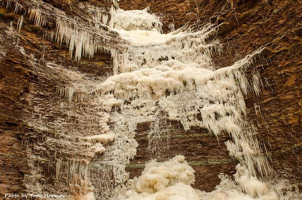 Bronte Creek January 2017
