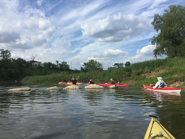 Nith River - 2017-06-08
