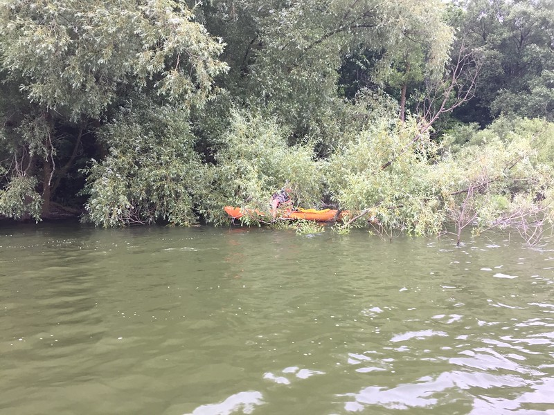 Woolwich Reservoir - 2017-06-22
