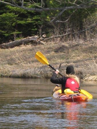 Judi kayak Green 1