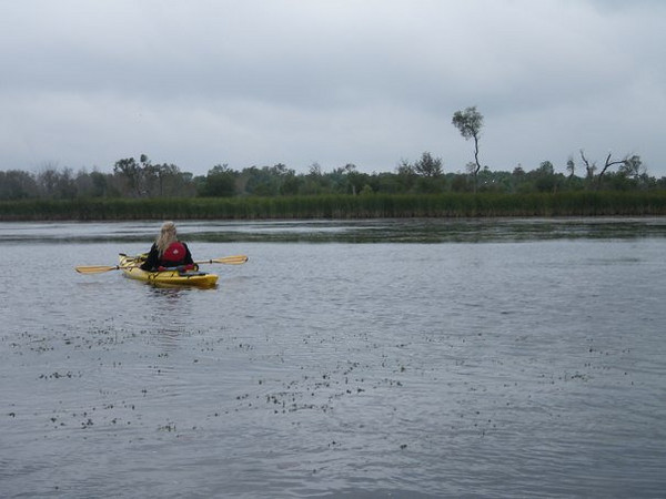 luther Marsh Paddle, 001 (19)