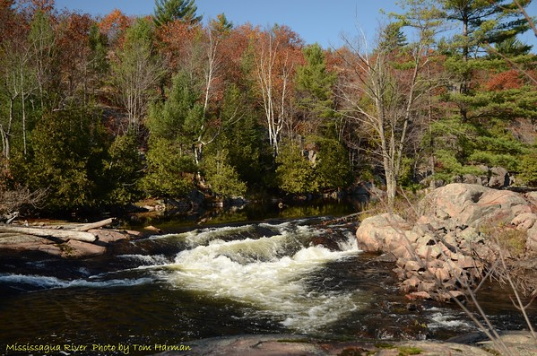 Mississagua River 23-Oct-11_DSC_5100