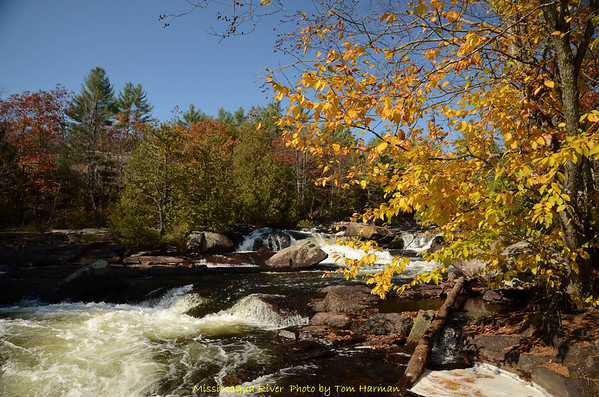 Mississagua River 23-Oct-11_DSC_5131