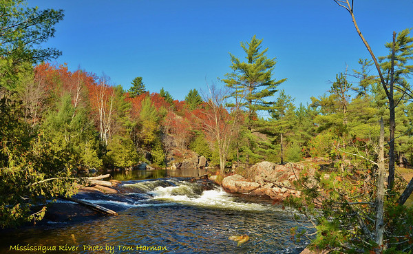 Mississagua River 23-Oct-11_DSC_5107