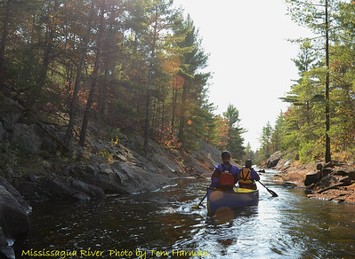 Mississagua River 23-Oct-11_DSC_5079