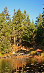 Mississagua River 23-Oct-11_DSC_5028