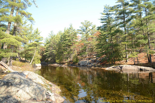 Mississagua River 23-Oct-11_DSC_5098