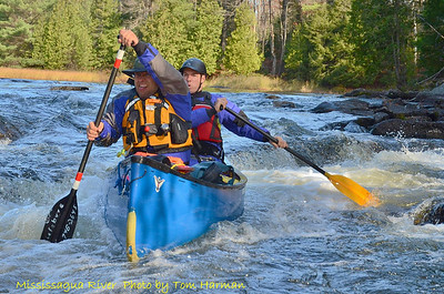 Mississagua River 23-Oct-11_DSC_5071
