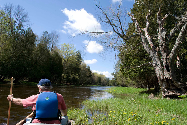 Saugeen River at Proton Station Photo by Peter Hafeman