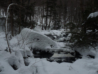 Bondi Weekend: Algonquin Park Snowshoeing - Track & Tower Trail, January 2012. Photo by John Ambrose