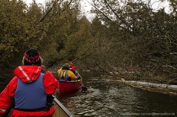 Eramosa River - Eden Mills to Stone Rd Guelph Photo by Tom Harman WWCC