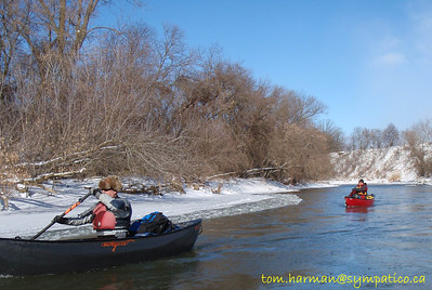 Nith River Canning to Paris 12-Feb-12 Photo by Tom Harman
