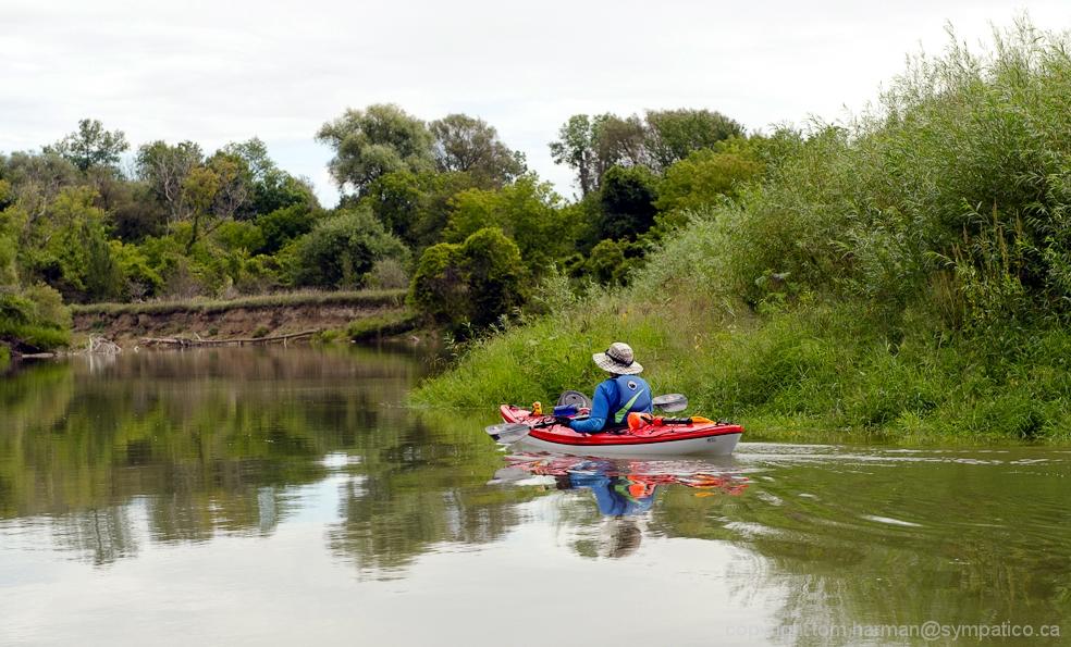 Photo by Tom Harman Saugeen River