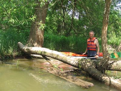 Exploring Big Creek June 2013