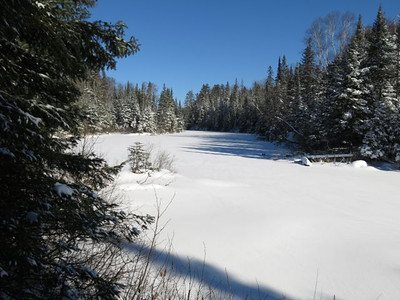 Oxtongue river1