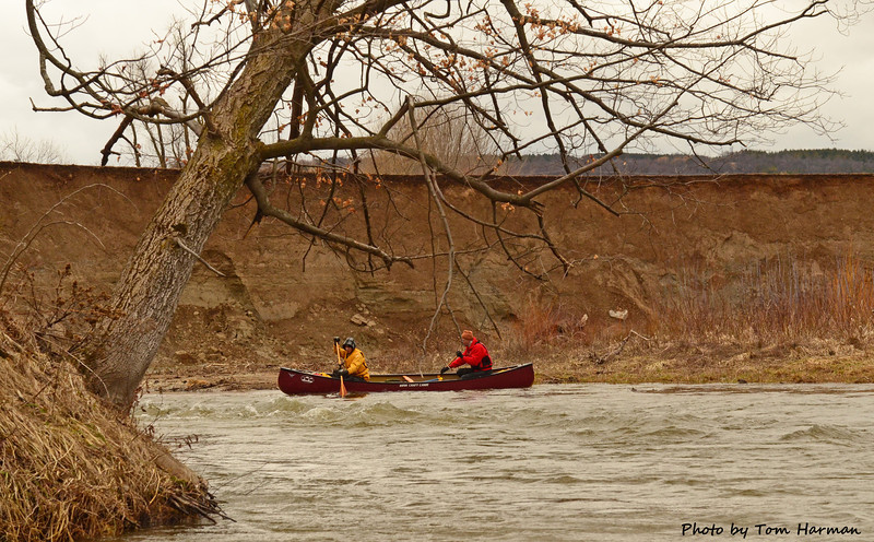 Mad River 14-Apr-13 - Tom Harman (18)
