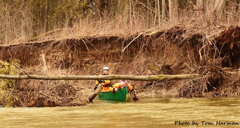 Mad River 14-Apr-13 - Tom Harman (21)